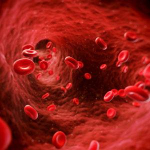 MD Blood