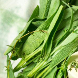 HERBS AFTER SYMPTOMS